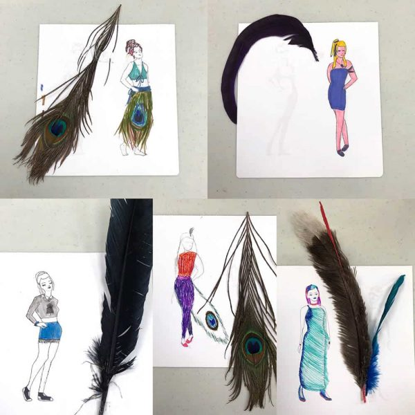 Threadheads student feather fashion drawings